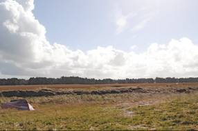 Thumbnail von Ferienhaus DR64 in Højby Lyng - Sejerø Bugt - Westseeland